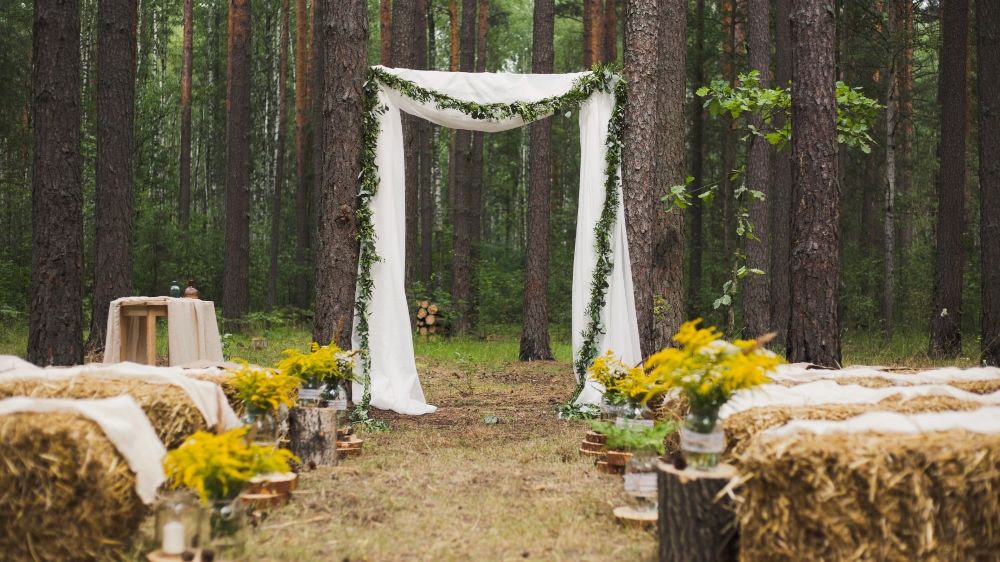5 Tips for  Planning a Magical Autumn Wedding